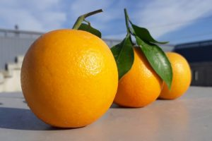 Stop drinking orange juice