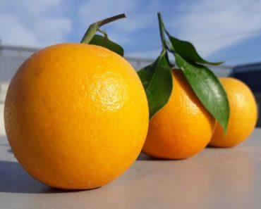 If you are drinking Orange juice regularly, here's why you should stop drinking orange juice immediately!