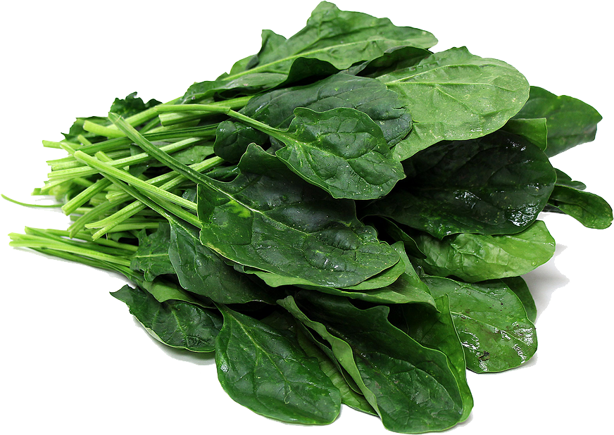 spinach_anti_aging_foods